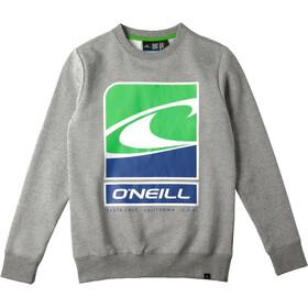 O'Neill Flag Wave Crew Sweatshirt Boys silver melee